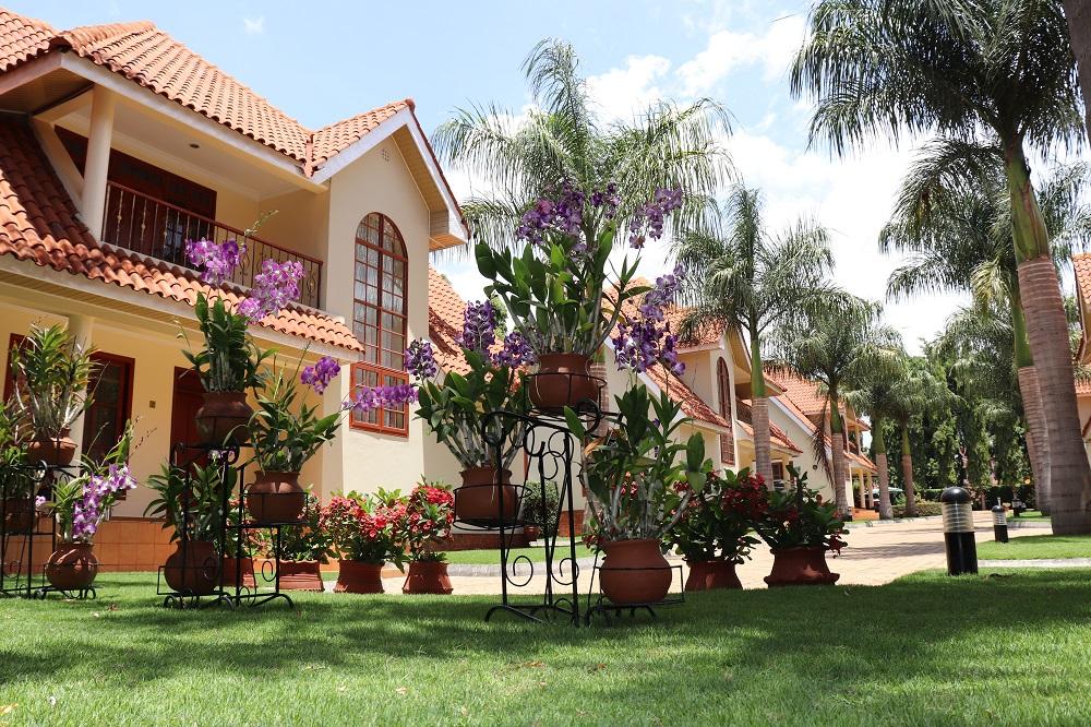 Moshi Luxurious Homes