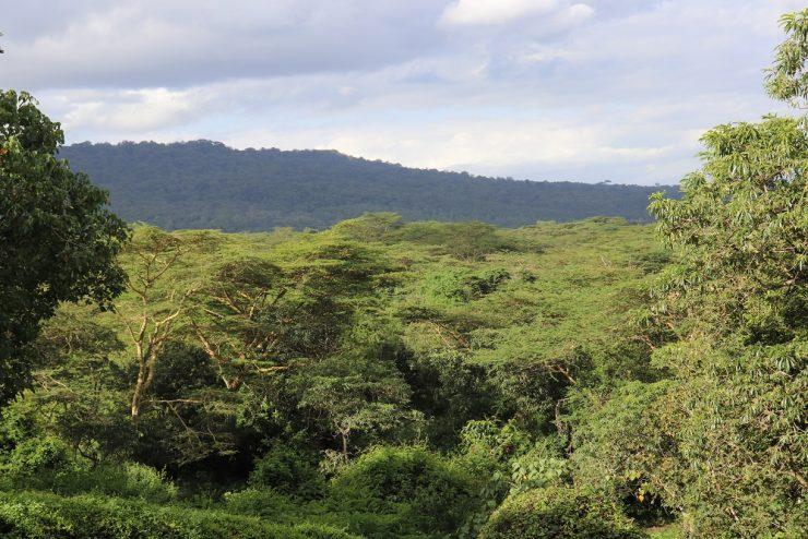 Borders Arusha National Park