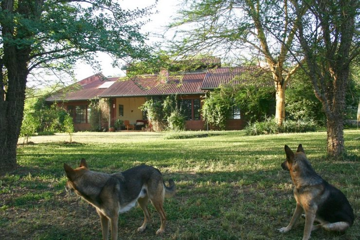 House & land for rent Kisongo.